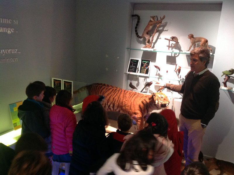 NATURAL SCIENCE MUSEUM FIELD TRIP