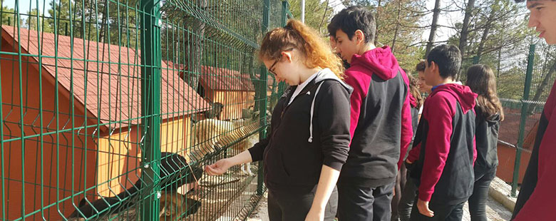 Our Social Responsibility Projects - Visit to Tepeören Animal Shelter
