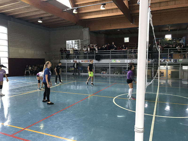 Voleyball Tournament Between Teachers And Students